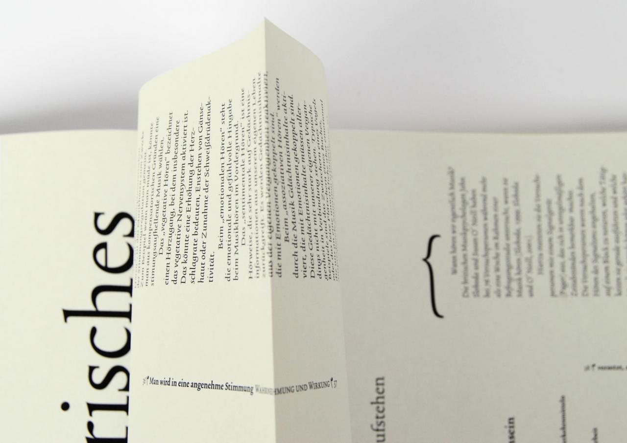 Svenja Limke <strong>Musikpsychologie</strong><br />Buchprojekt